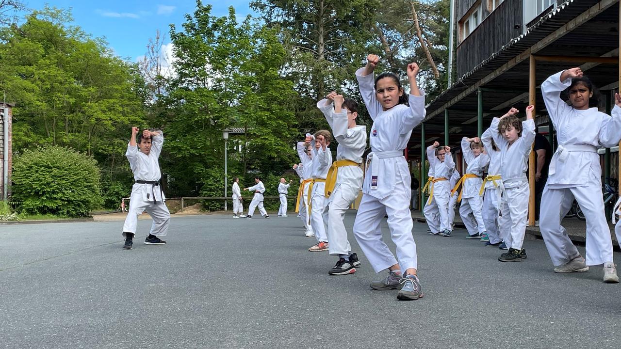 ZDFtivi – در اینجا نحوه کار تمرینات کاراته در طول تاج نشان داده شده است